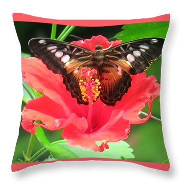 Beautiful Butterfly Throw Pillow by Betty Buller Whitehead