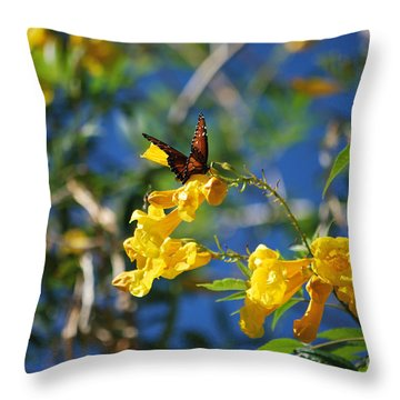 Beautiful Butterfly Throw Pillow by Donna Greene