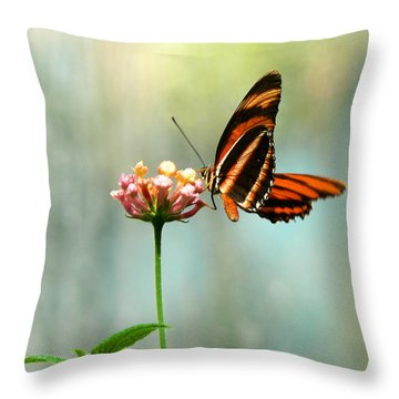 Beautiful Butterfly Throw Pillow by Laurel Powell