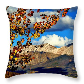 Beautiful Colorado Throw Pillow