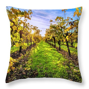 Beautiful Colors On The Vines Throw Pillow