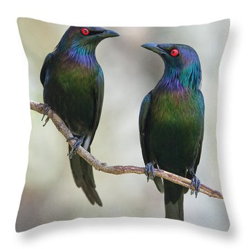 Starlings Throw Pillows