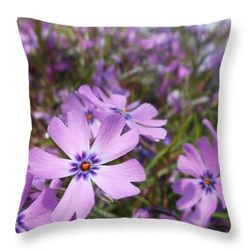 Beautiful Creeping Purple Phlox Throw Pillow