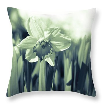 Beautiful Daffodil Throw Pillow