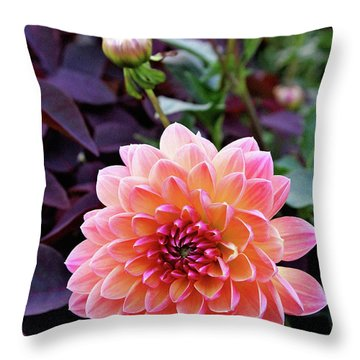 Beautiful Dahlia Throw Pillow