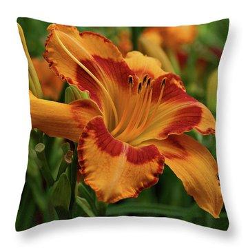Beautiful Daylily Throw Pillow