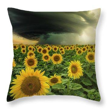 Throw Pillow featuring the photograph Beautiful Destruction  by Aaron J Groen