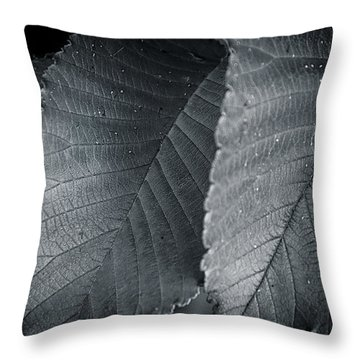 Beautiful Detail Throw Pillow