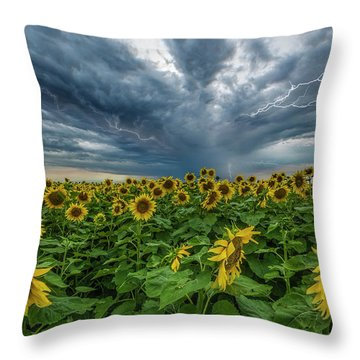 Throw Pillow featuring the photograph Beautiful Disaster  by Aaron J Groen