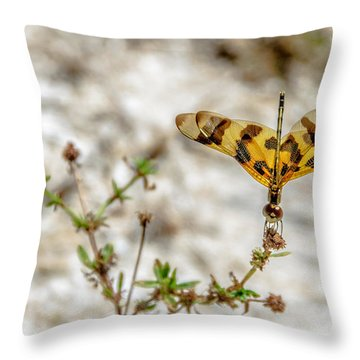 Beautiful Dragonfly Throw Pillow