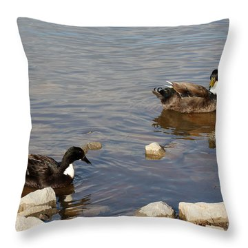 Beautiful Ducks Throw Pillow