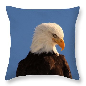Throw Pillow featuring the photograph Beautiful Eagle by Jeff Swan