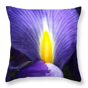 Beautiful Flame Throw Pillow