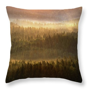 Beautiful Foggy Forest During Autumn Sunrise, Saxon Switzerland, Germany Throw Pillow