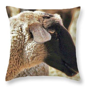 Beautiful Girl Throw Pillow
