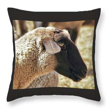 Beautiful Girl Throw Pillow