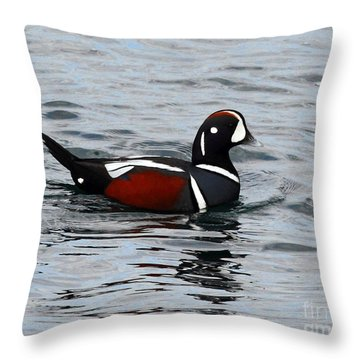 Beautiful Harlequin Duck Throw Pillow
