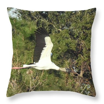 Throw Pillow featuring the pyrography Beautiful In Flight by Sally Sperry