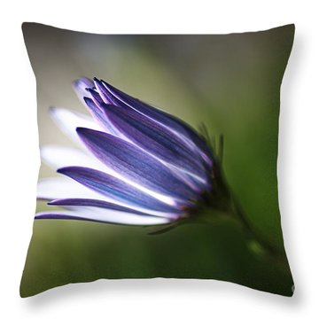 Beautiful Inner Glow Of The Daisy Throw Pillow