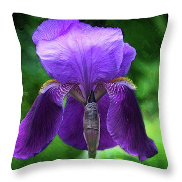Beautiful Iris With Texture Throw Pillow