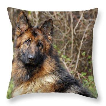Beautiful Jessy Throw Pillow