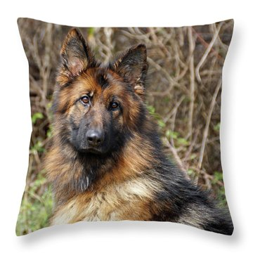 Throw Pillow featuring the photograph Beautiful Jessy by Sandy Keeton