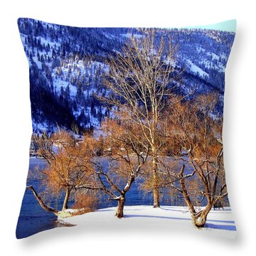 Beautiful Kaloya Park Throw Pillow
