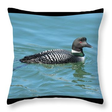 Beautiful Loon Throw Pillow by Debbie Stahre