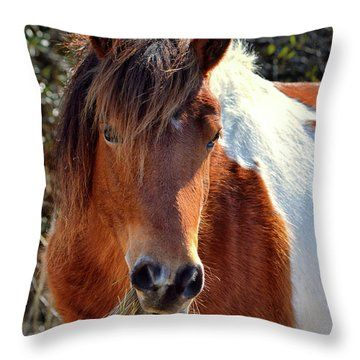 Beautiful Mare Ms. Macky Throw Pillow