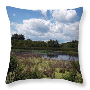 Beautiful Marsh View Throw Pillow