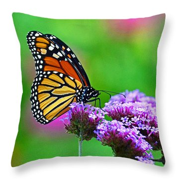 Throw Pillow featuring the photograph Beautiful Monarch by Rodney Campbell