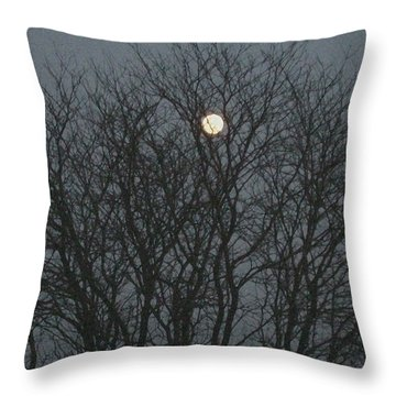 Beautiful Moon Throw Pillow
