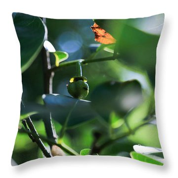 Beautiful Nature Throw Pillow by Christopher L Thomley