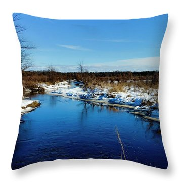 Beautiful Necedah Wildlife Refuge  Throw Pillow by Ricky L Jones