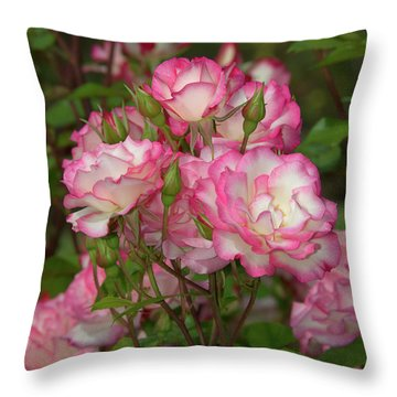 Beautiful Nicole Roses Lighter Throw Pillow