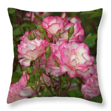 Beautiful Nicole Roses Lighter Throw Pillow