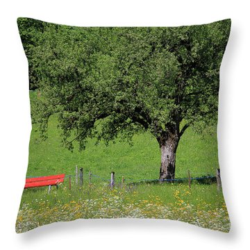 Beautiful Place To Sit Throw Pillow