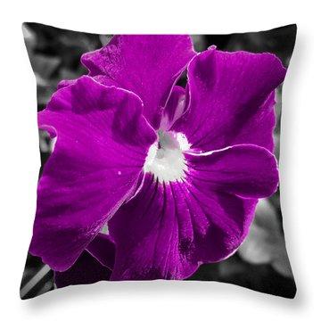 Beautiful Purple Throw Pillow