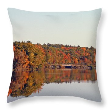 Beautiful Reflections Throw Pillow