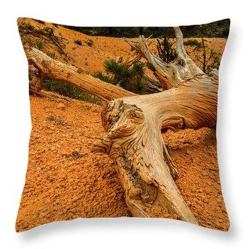 Beautiful Snag Throw Pillow