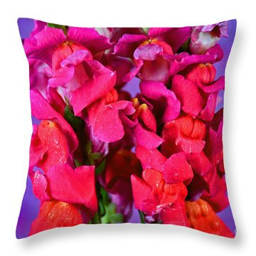 Beautiful Snapdragon Flowers Throw Pillow