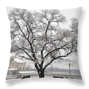Beautiful Snow Tree Throw Pillow