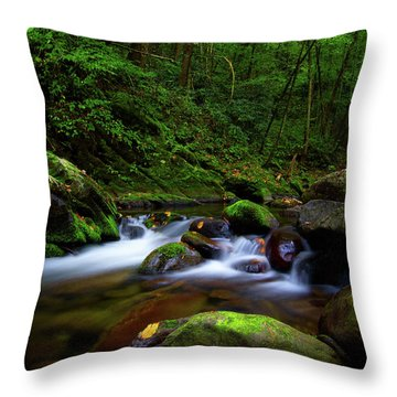 Beautiful Stream In Tremont Smoky Mountains Tennessee Throw Pillow