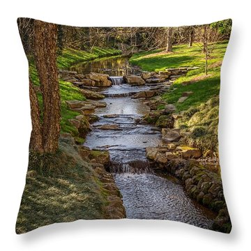 Beautiful Stream Throw Pillow
