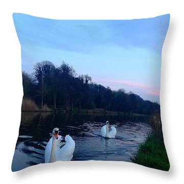Beautiful Swans Throw Pillow