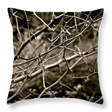 The Path To Love Throw Pillow