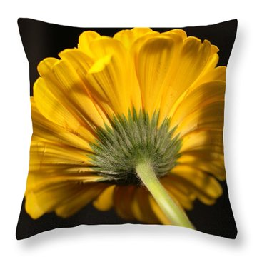 Throw Pillow featuring the photograph Beautiful Underside by Jeff Swan
