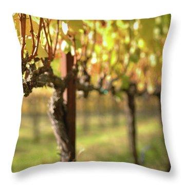 Beautiful Vineyard In Napa Valley Throw Pillow
