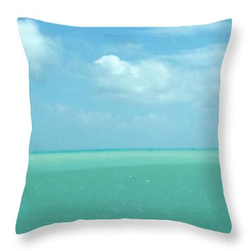 Beautiful Waters Throw Pillow by Robin Regan