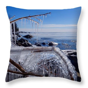 Beautiful Winter Day Throw Pillow by Sandra Updyke